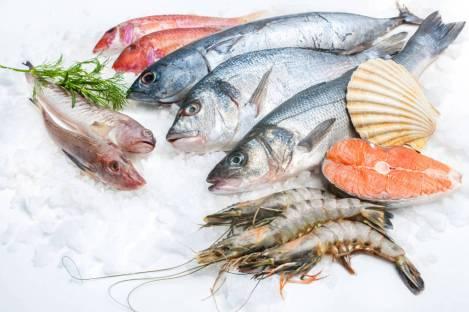 cual-es-mejor-el-pescado-salvaje-o-el-de-piscifactoria